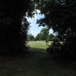 Grange estate field