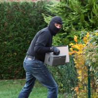 Theft from garden